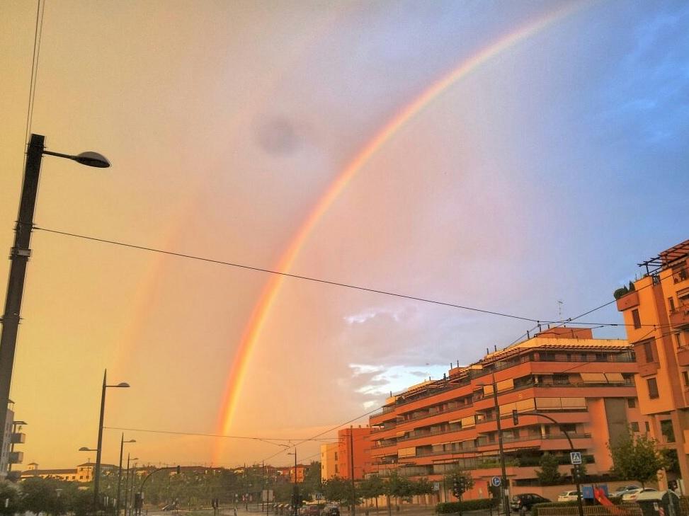 Tuiteando el arcoíris